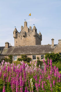 Beautiful gardens and famous castle in Scotland by Danita Delimont
