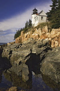Bass Harbor Head Lighthouse, Acadia National Park, Maine by Danita Delimont