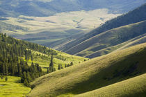Looking down at the Jocko riover Valley in Montana von Danita Delimont