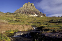 NA, USA, Montana, Glacier NP Stream below Mt. Reynolds, Logan Pass area von Danita Delimont