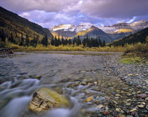 McDonald Creek and Garden Wall in Glacier National Park in Montana von Danita Delimont