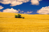 NA,USA,Washington State,Palouse Region,Combines Harvesting Crop by Danita Delimont