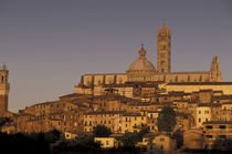 Europe, Italy, Tuscany, Siena 13th Century Duomo and Palazzo Pubblico, sunset by Danita Delimont