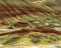 USA, Oregon, John Day Fossil Beds National Monument by Danita Delimont
