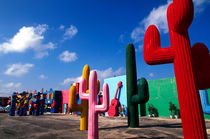 Colorful cactus artwork outside of Cancun, Mexico von Danita Delimont
