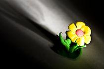 Flower-high-contrast-slant