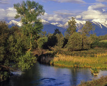 Mission Creek runs through the National Bison Range with Mission Mountains by Danita Delimont