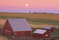NA, USA, Washington, NW of Colfax Moonrise at sunset with red barns von Danita Delimont