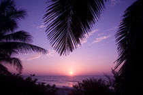Sunset at West End, Cayman Brac, Cayman Islands, Caribbean. von Danita Delimont