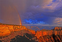 United States, Arizona, Grand Canyon National Park von Danita Delimont