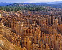 USA, Utah, Bryce Canyon NP. The striking hoodoos of Bryce Canyon National Park by Danita Delimont