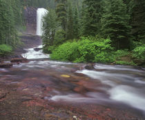 Virginia Falls in Glacier National Park in Montana von Danita Delimont