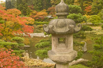 USA, Washington State, Seattle. Japanese Garden, Washington Park Arboretum. von Danita Delimont