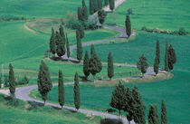 Europe, Italy, Tuscany. Winding road near Pienza. by Danita Delimont