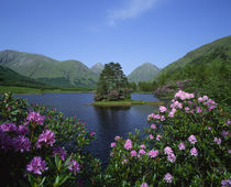 Glen Etive, Highlands, Scotland von Danita Delimont