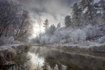 Hoarfrost along a slough at the Kelly Island FWP area along the Clark Fork River von Danita Delimont