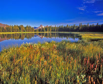 Index Peak reflects into Mud Lake on the Beartooth Plateau in Wyoming von Danita Delimont
