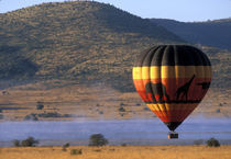 South Africa, Pilanesburg Game Reserve, Hot air balloon near Sun City von Danita Delimont