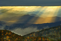 USA, North Carolina, Great Smoky Mountains von Danita Delimont