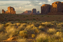 USA, Utah, Monument Valley National Park by Danita Delimont