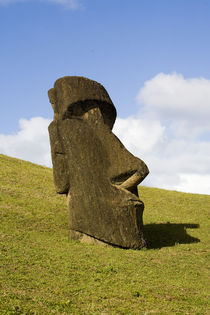 Moai by the quarry on the outer slope of the Rano Raraku Volcano, Rapa Nui by Danita Delimont