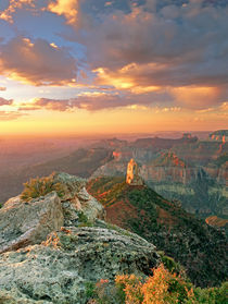 USA, Arizona, Grand Canyon National Park by Danita Delimont
