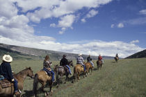 Group horseback riding on trail, Boulder River Valley, Montana by Danita Delimont