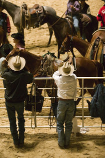 USA-TEXAS-Fort Worth: Cowboys at Indoor Rodeo (NR) Will Rogers Memorial Center von Danita Delimont