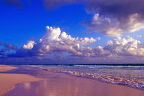 Pink Sand Beach, Harbour Island, Bahamas. by Danita Delimont