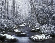 N.A., USA, Tennessee von Danita Delimont