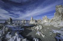 N.A., USA, California. Mono Lake, South Tufa Reserve by Danita Delimont