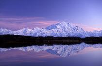 NA, USA, Alaska by Danita Delimont