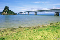 Asia, Japan, Okinawa, Kouri Bridge by Danita Delimont