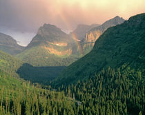 USA, Montana, Glacier NP von Danita Delimont