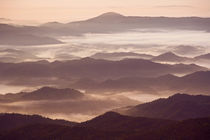Morning fog in the southern Appalachian Mountains, North Carolina by Danita Delimont