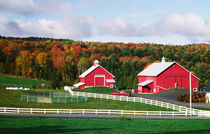 A farm in Vermont near Peacham. RELEASE AVAILABLE. von Danita Delimont