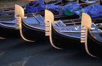 Italy, Veneto, Venice. Row of Gondolas. by Danita Delimont