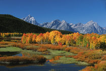 Grand Teton National Park von Danita Delimont