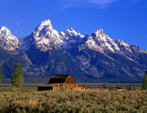 Morning light on the Tetons & old barn.  Grand Teton National Park, Wyoming. by Danita Delimont