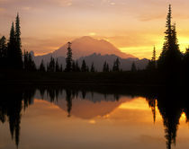 USA, Washington, Mt Rainier NP, Upper Tipsoo Lake reflection at sunset by Danita Delimont