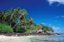 Seychelles, Mahe Island, Anse Royale Beach. von Danita Delimont