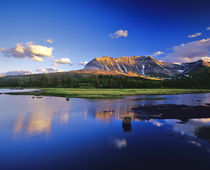 Sofa Mountain Reflects in Beaver Pond in Waterton Lakes National Park von Danita Delimont