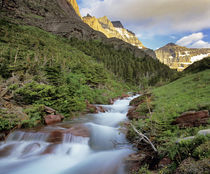 Baring Creek, Going to the Sun Mtn in Glacier National Park in Montana by Danita Delimont