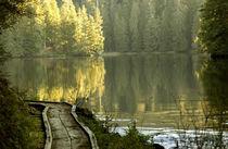 USA, Alaska, near Ketchikan, Naha Lagoon von Danita Delimont