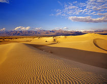 Mesquite Flat Sand dunes in Death Valley National Park in California by Danita Delimont