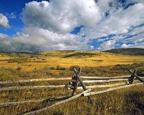 Mount Haggin NWR near Anaconda Montana by Danita Delimont