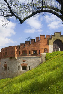 Wawel Castle, Krakow, Poland by Danita Delimont