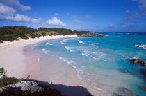 Caribbean, Bermuda, Southampton Parish, Horseshoe Bay. Pink sand beach von Danita Delimont