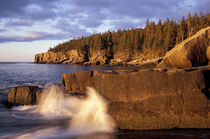 North America, US, ME, The rocky Maine coast. von Danita Delimont