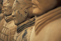 The Army of terra cotta warriors at Emperor Qin Shihuangdi's Tomb, China by Danita Delimont